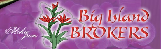 Big Island Brokers